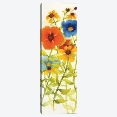 Americana Meadow II Canvas Print #WAC6410} by Shirley Novak Art Print