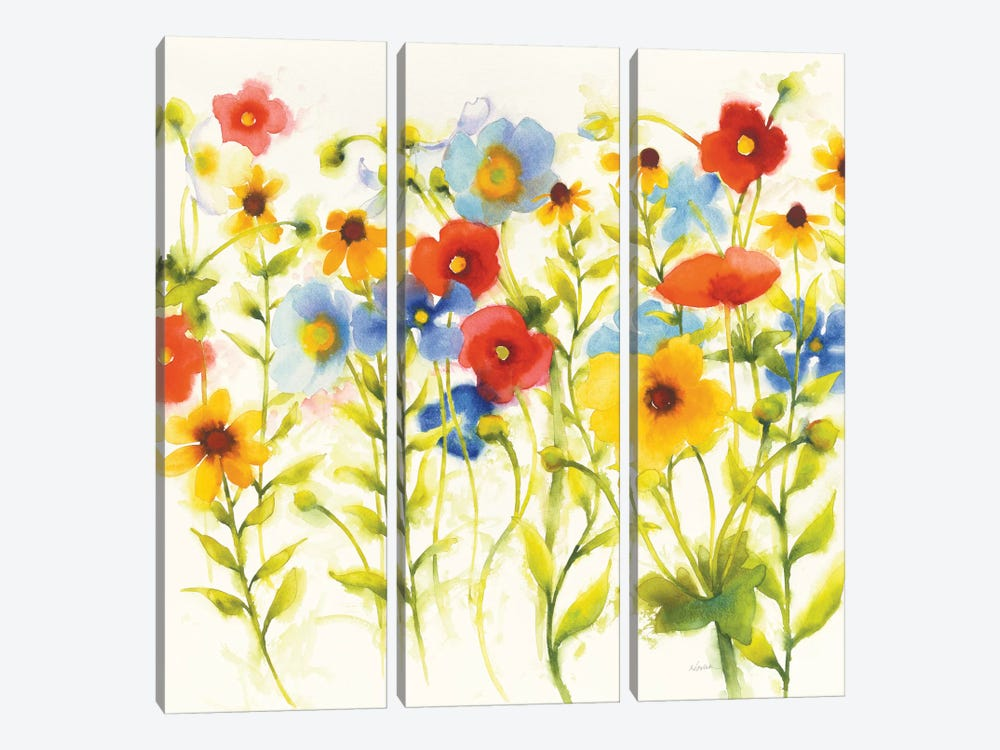Americana Meadow IV by Shirley Novak 3-piece Canvas Wall Art