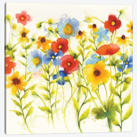 Americana Meadow IV Canvas Print #WAC6412} by Shirley Novak Art Print