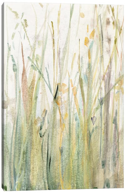 Spring Grasses I Canvas Art Print