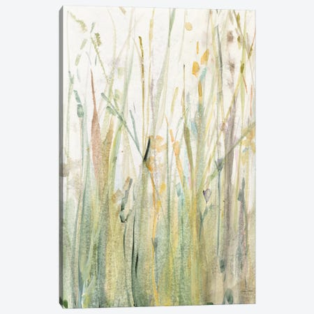Spring Grasses I Canvas Print #WAC6422} by Avery Tillmon Canvas Artwork