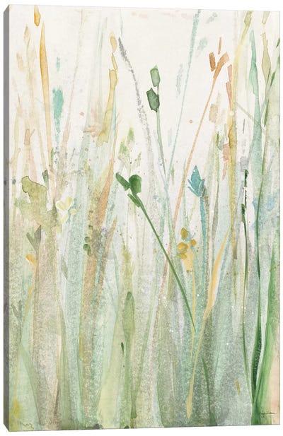 Spring Grasses II Canvas Art Print