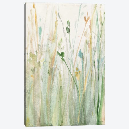 Spring Grasses II Canvas Print #WAC6423} by Avery Tillmon Canvas Artwork
