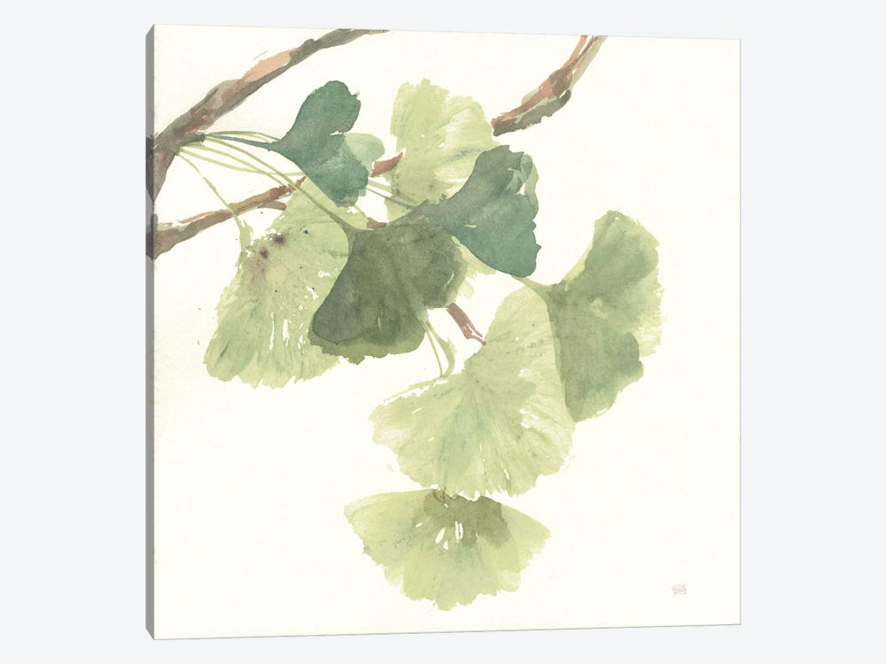 Light Gingko Leaves I by Chris Paschke 1-piece Canvas Art