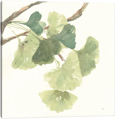 Light Gingko Leaves I Canvas Art Print