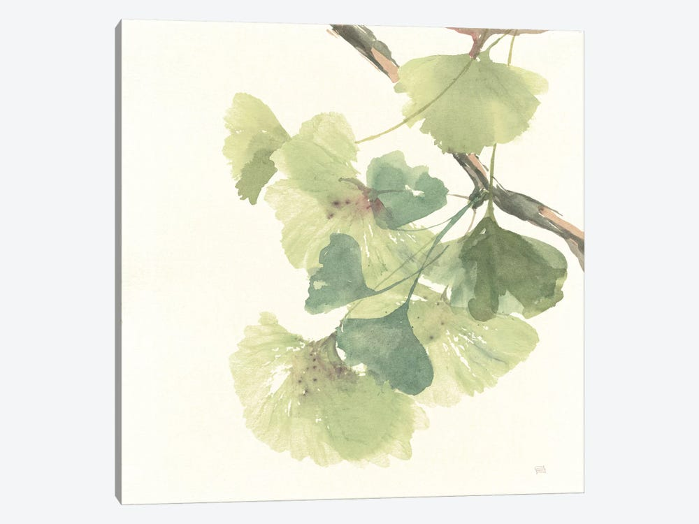 Light Gingko Leaves II by Chris Paschke 1-piece Canvas Print