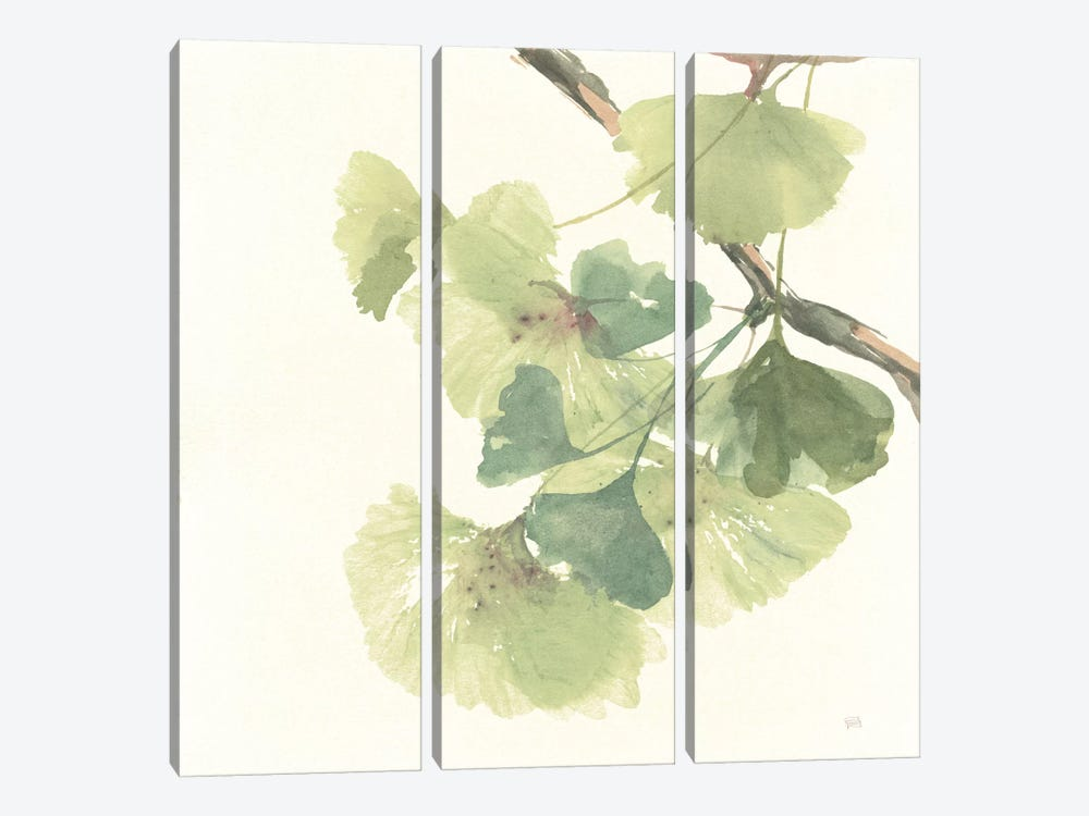 Light Gingko Leaves II by Chris Paschke 3-piece Art Print