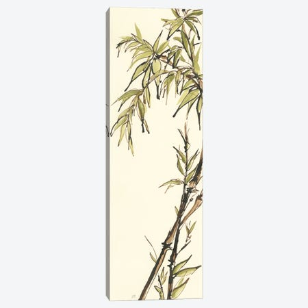 Summer Bamboo I Canvas Print #WAC6440} by Chris Paschke Canvas Art