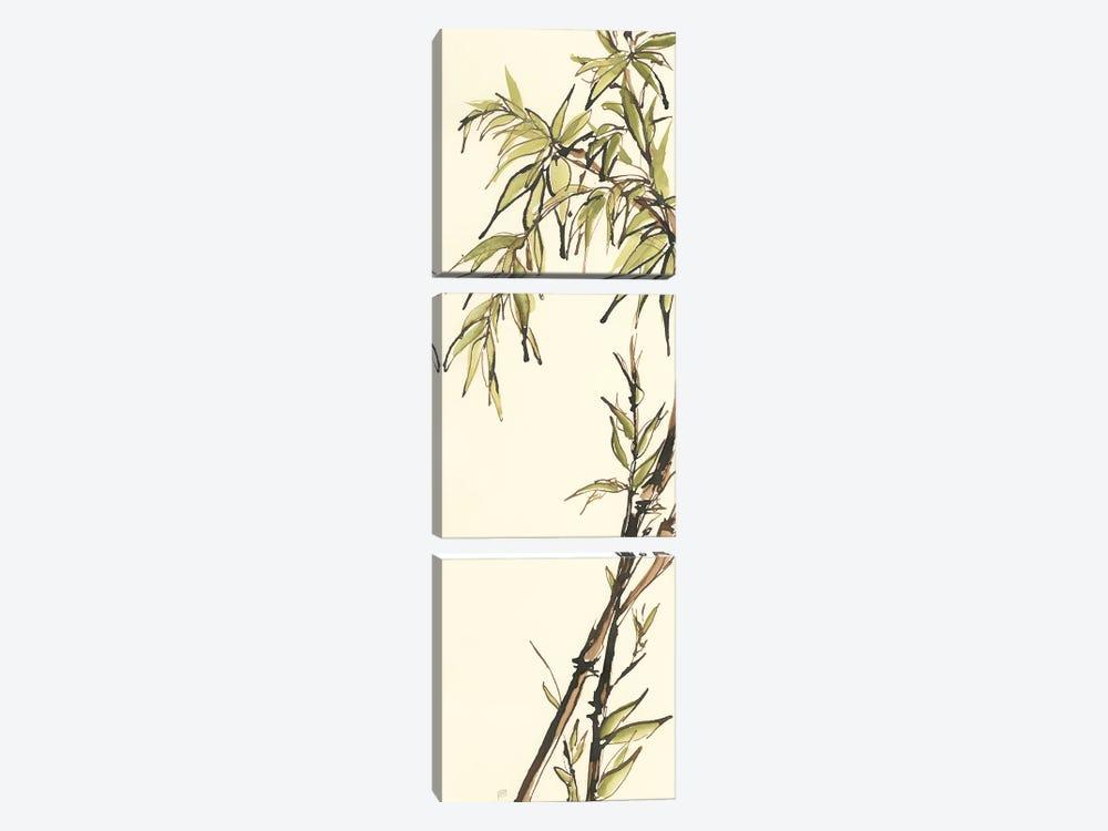 Summer Bamboo I by Chris Paschke 3-piece Canvas Print