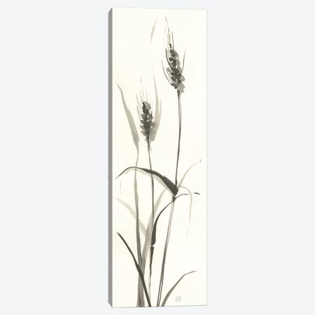 Wild Grass I Canvas Print #WAC6442} by Chris Paschke Canvas Art