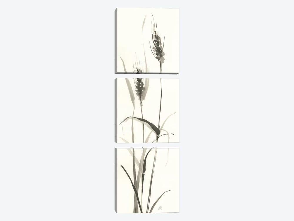 Wild Grass I by Chris Paschke 3-piece Canvas Art Print