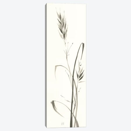Wild Grass II Canvas Print #WAC6443} by Chris Paschke Canvas Artwork