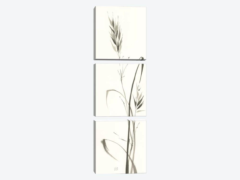 Wild Grass II by Chris Paschke 3-piece Canvas Artwork