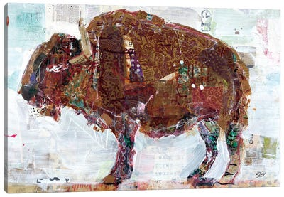 El Buffalo Canvas Art Print
