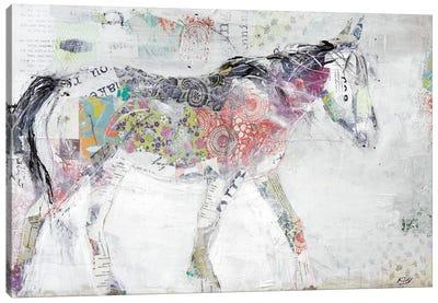 Wild Pinto Canvas Print #WAC6448