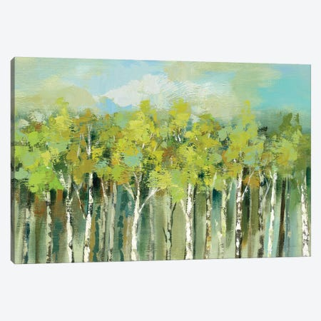 April Tree Tops Canvas Print #WAC6508} by Silvia Vassileva Canvas Print