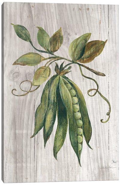 Market Vegetables II Canvas Art Print