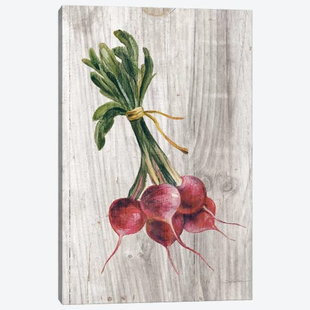 Market Vegetables III Canvas Print #WAC6524} by Silvia Vassileva Canvas Artwork