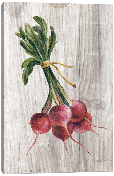 Market Vegetables III Canvas Art Print