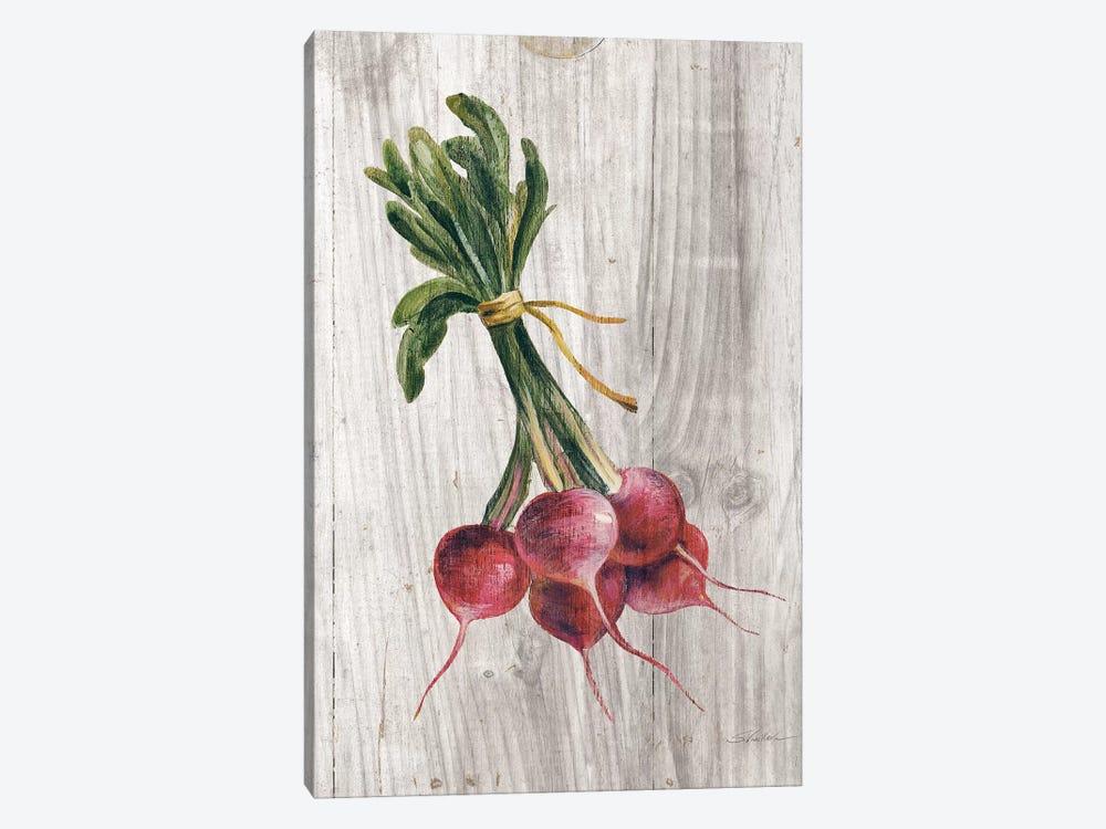 Market Vegetables III by Silvia Vassileva 1-piece Canvas Artwork