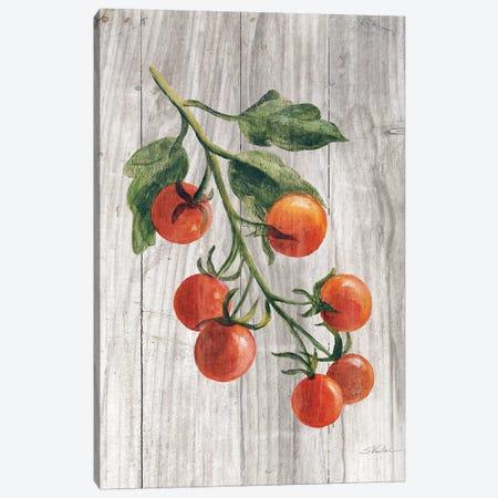 Market Vegetables IV Canvas Print #WAC6525} by Silvia Vassileva Canvas Wall Art
