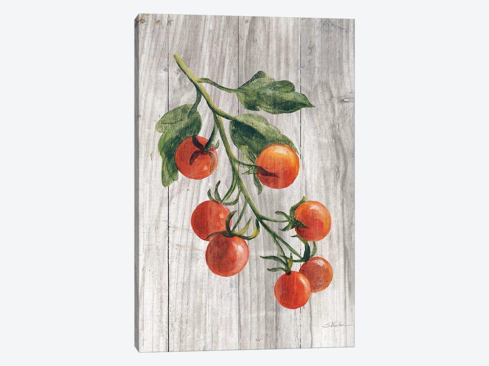 Market Vegetables IV by Silvia Vassileva 1-piece Canvas Print