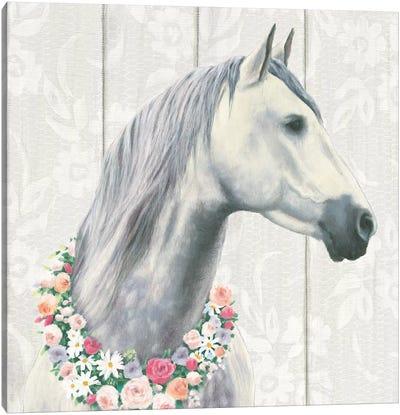 Spirit Stallion I Canvas Print #WAC6553