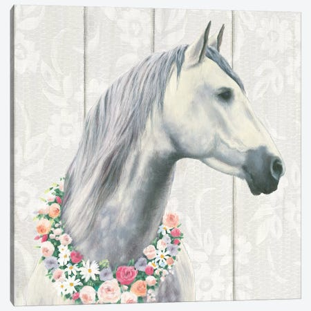 Spirit Stallion I Canvas Print #WAC6553} by James Wiens Canvas Wall Art