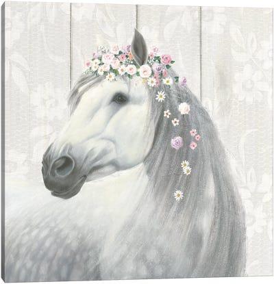 Spirit Stallion II Canvas Print #WAC6554