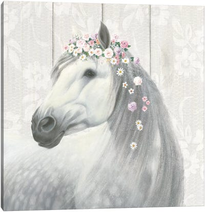 Spirit Stallion II Canvas Art Print