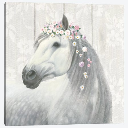 Spirit Stallion II Canvas Print #WAC6554} by James Wiens Art Print