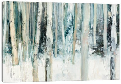 Winter Woods III Canvas Art Print