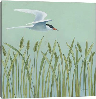 Free As A Bird I Canvas Art Print