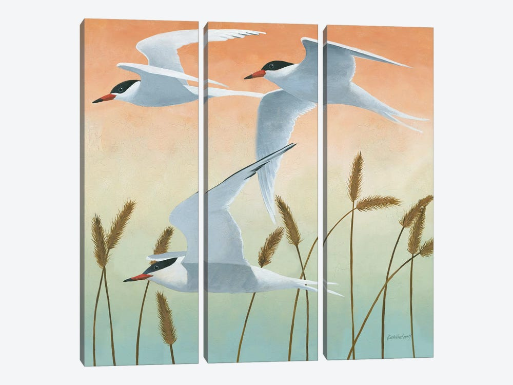 Free As A Bird II by Kathrine Lovell 3-piece Canvas Wall Art