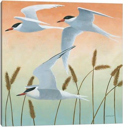 Free As A Bird II Canvas Art Print