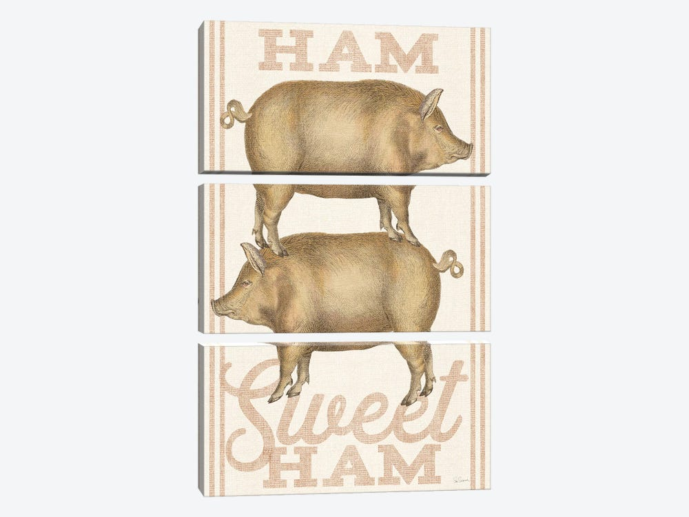 Ham Sweet Ham 3-piece Canvas Print