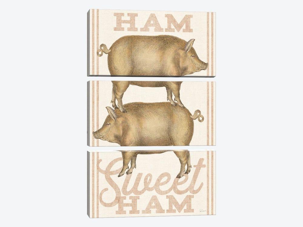Ham Sweet Ham by Sue Schlabach 3-piece Canvas Print