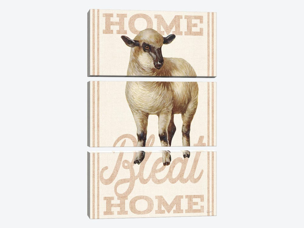 Home Bleat Home by Sue Schlabach 3-piece Canvas Artwork