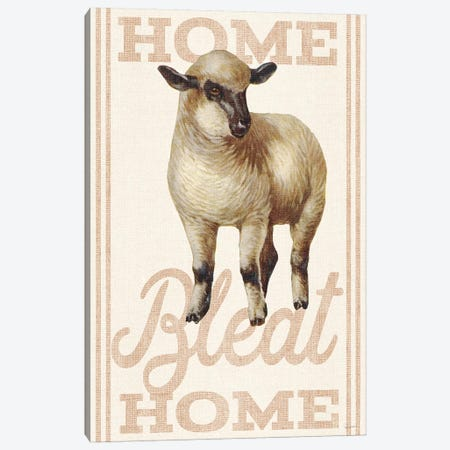 Home Bleat Home Canvas Print #WAC6593} by Sue Schlabach Canvas Wall Art