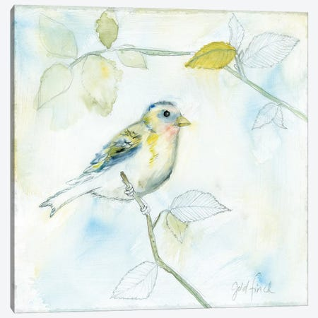 Sketched Songbird I Canvas Print #WAC6597} by Sue Schlabach Canvas Print