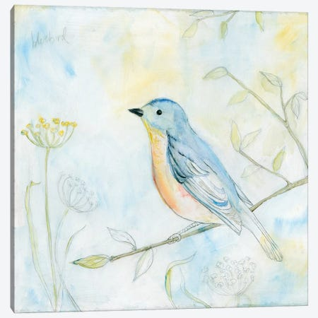 Sketched Songbird II Canvas Print #WAC6598} by Sue Schlabach Canvas Artwork
