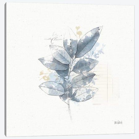 Floresta II Canvas Print #WAC6601} by Katie Pertiet Canvas Artwork