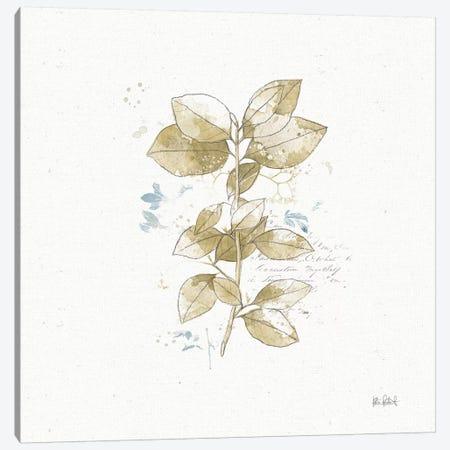 Floresta III Canvas Print #WAC6602} by Katie Pertiet Canvas Artwork