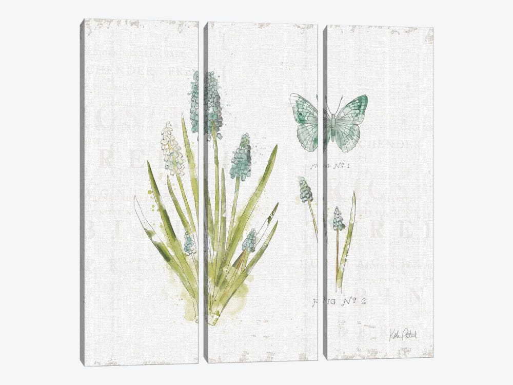 In The Forest VII by Katie Pertiet 3-piece Canvas Artwork