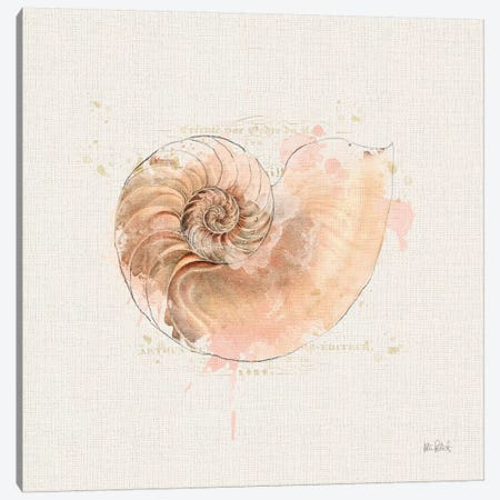 Shell Collector II Canvas Print #WAC6620} by Katie Pertiet Canvas Wall Art