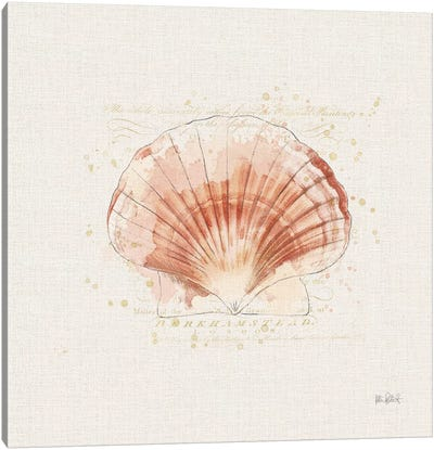 Shell Collector IV Canvas Art Print