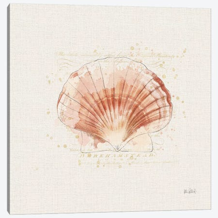 Shell Collector IV Canvas Print #WAC6622} by Katie Pertiet Canvas Art