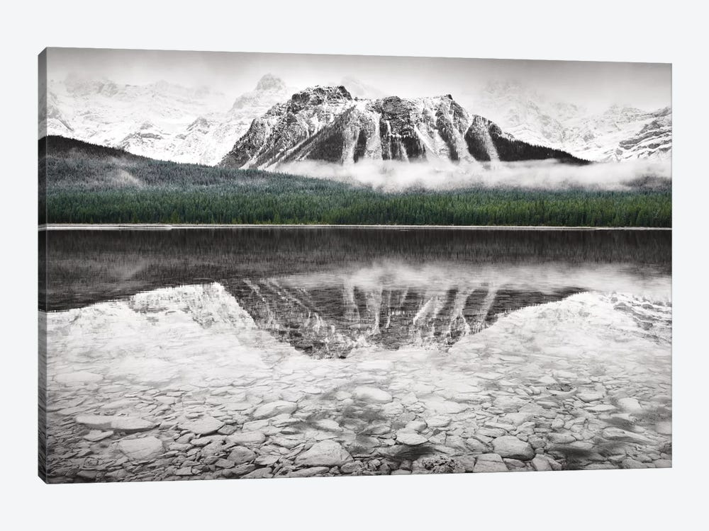 Waterfowl Lake I by Alan Majchrowicz 1-piece Canvas Wall Art