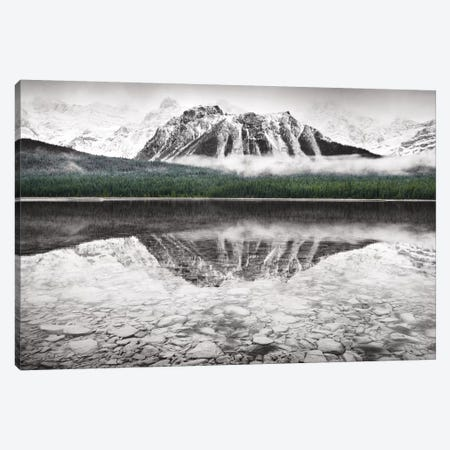 Waterfowl Lake I Canvas Print #WAC6688} by Alan Majchrowicz Canvas Artwork