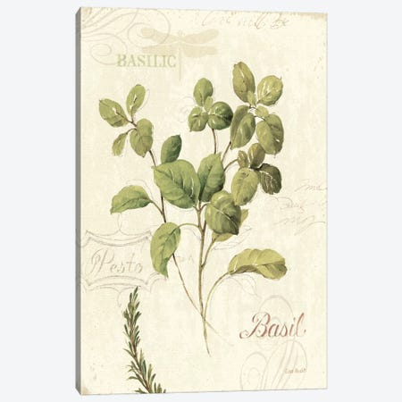 Aromatique III Canvas Print #WAC669} by Lisa Audit Canvas Wall Art